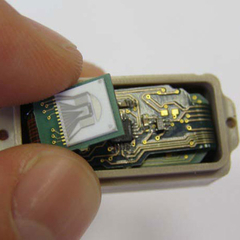 microchip tumores